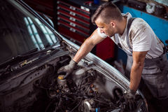 Brake fluid check up. Mechanic is checking level of brake fluid in container Stock Photography