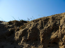Brake. Sand closeup with blue sky Royalty Free Stock Images