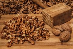 Braking walnuts Stock Image
