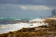 Braking waves. Storming day in South Florida. View of waves breaking at shore. Stormy, cloudy sky Royalty Free Stock Image