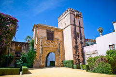 Brama Istni Alcazar ogródy w Seville, Hiszpania. Fotografia Royalty Free