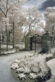 brama ogrodowa Obrazy Royalty Free
