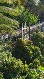brama ogrodowa Obraz Royalty Free