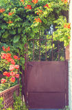 brama ogrodowa Fotografia Stock