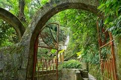 Brama przy Lasem Pozas także znać jako Edward James ogródy w Meksyk fotografia royalty free