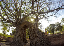 Brama upływ czasu przy ruinami Wata Phra NgamWat Cha baran, Phra Nakorn Si Ayutthaya, Tajlandia Obrazy Royalty Free