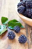 Bramble Royalty Free Stock Photos