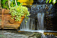 Bramble in basket with waterfall Stock Photo