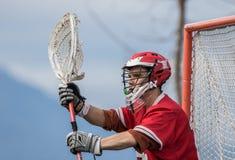 5 bramkarzów lacrosse Fotografia Stock