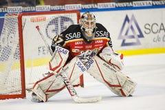 bramkarza gustafsson hokeja lód Johan Zdjęcia Royalty Free