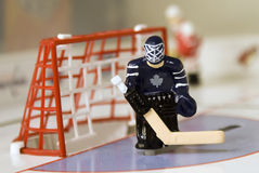 bramkarza hokej obraz stock