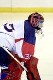 bramkarza hokeja lód Obraz Stock