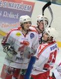 bramkowy hokeja lodu radości dopasowanie Fotografia Stock