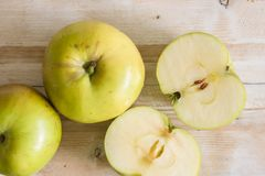 Bramley Apples. Bramley cooking apples or Malus domestica Bramley`s Seedling a popular British variety for making pies and desserts stock photo