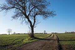 Bramley attracca il vicolo, nel Derbyshire Immagine Stock