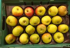 Bramley Kokende Appelen stock afbeelding