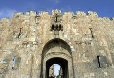 bramy Jerusalem lew s fotografia stock