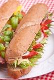 Bran Baguette Sandwich Royalty Free Stock Image
