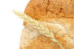 Bran Bread with Ear of Wheat Stock Images