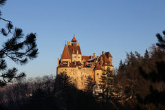 Travel Romania: Bran Castle Branch Frame Stock Photography