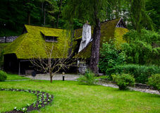 Bran Castle Garden stock photo