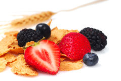 Bran cereal with fruit Stock Photography