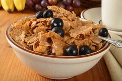 Bran flakes with blueberries Royalty Free Stock Image
