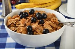 Bran flakes with blueberries Stock Images