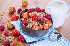 Bran flakes with fresh raspberries and strawberries and pitcher. Bran flakes with fresh raspberries and strawberries on blue checkered cloth and a pitcher of Stock Photography