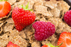 Bran flakes with fresh raspberries and strawberries Stock Photography