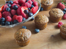 Bran muffins and berry fruit on wooden board Stock Photography