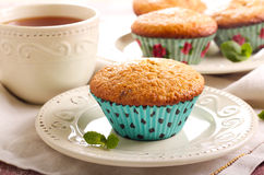 Bran and raisin muffins Royalty Free Stock Image