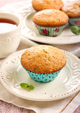 Bran and raisin muffins Royalty Free Stock Photo
