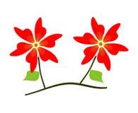 Branc com flores vermelhas Fotografia de Stock