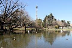 Branca van Milaan, Milaan torre Royalty-vrije Stock Afbeeldingen