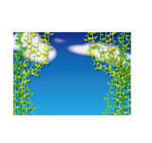 Branch. Branches, flowers, white clouds floating in the blue sky stock illustration