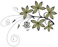 Branch. Floral decor. Detailed vector illustration Stock Photography