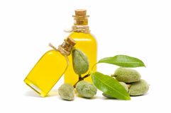 Branch of almond and almond oil Royalty Free Stock Photo