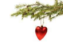 Branch ate a Christmas ornament Stock Photography