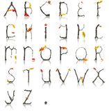 Branch_Autumn_Alphabet Στοκ Εικόνα