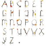 Branch_Autumn_Alphabet Stock Image