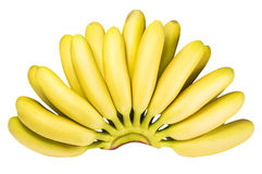 Branch of baby bananas isolated on white background Stock Photos