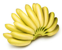 Branch of baby bananas isolated on white background Royalty Free Stock Photos