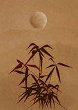 Branch of a bamboo in ancient Chinese style Royalty Free Stock Photos