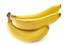 Branch of bananas Stock Photography
