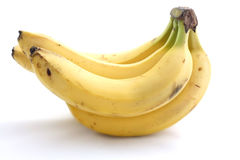 Branch of bananas on a white background. A branch of bananas on a white background Stock Image