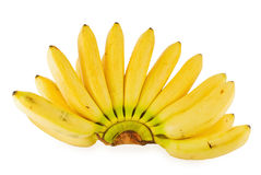 Branch of banans Royalty Free Stock Images