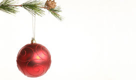 Branch and Bauble Stock Photography
