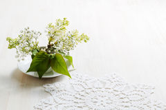Branch of bird-cherry in a small white vase Stock Images