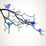 Branch with Birds Stock Photography